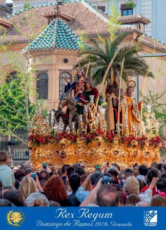 """Cofradía Borriquilla Granada: """"¿Y SI MAÑANA FUERA DOMINGO? OJALÁ FUERA DOMINGO DE RAMOS"""" CARTEL 2019"""